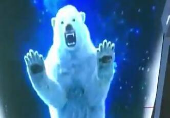 娄底北极熊全景天幕投影方案效果视频