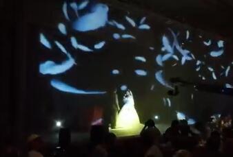 玉溪裸眼3D全息投影婚礼主题视频