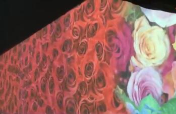 云浮鲜花盛开地面互动投影系统