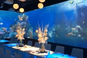 云浮餐厅多媒体投影海底世界视频